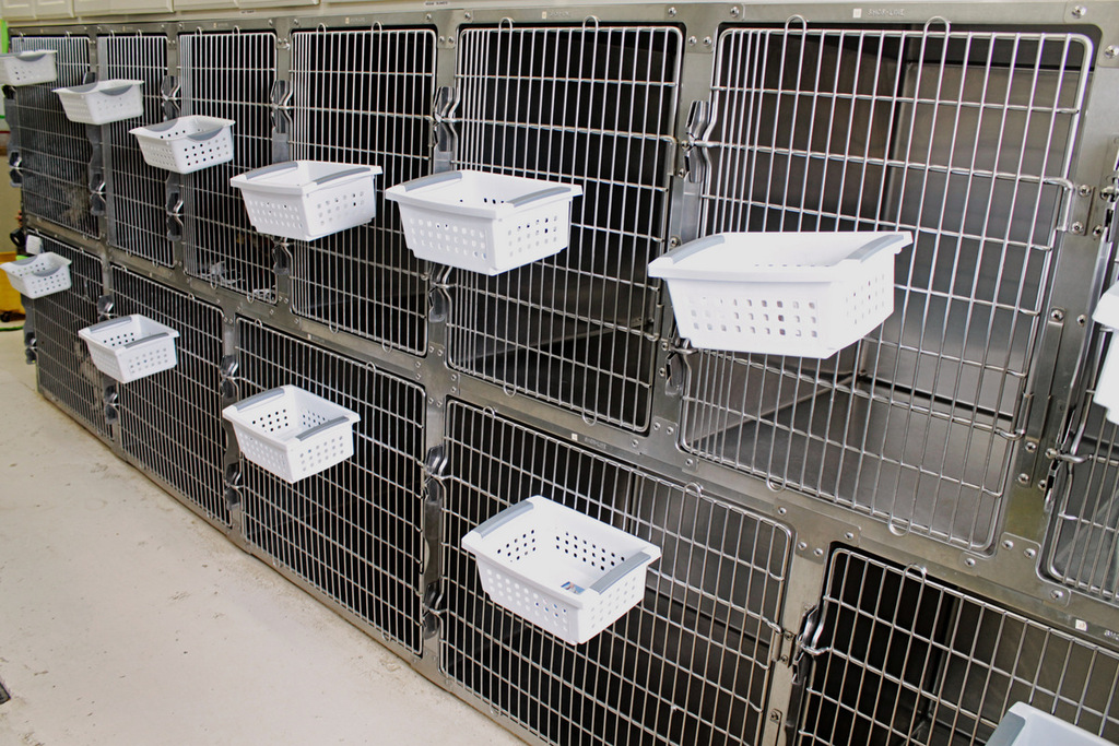 Small Dog Kennels